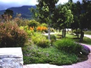 Garden route botanical gardens