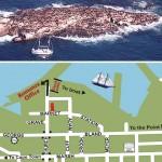 seal island trips mossel bay