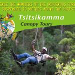 Tsitsikamma Treetop Tours