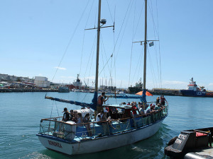 Boat Trips in Mossel Bay