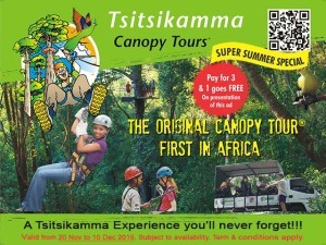 Tsitsikamma Canopy Tours Summer Special 2015