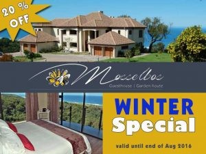 Winter Accommodation Special Offer near Great Brakriver