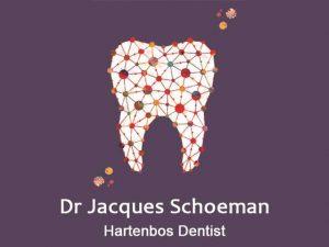 Dr Jacques Schoeman Hartenbos Dentist