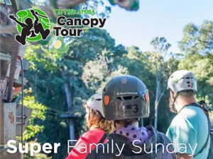 Tsitsikamma-Canopy-Tour-Super-Sunday