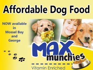 Affordable Dog Food in Mossel Bay