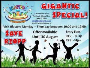 Gigantic-Kiddies-Play-Special-in-Mossel-Bay