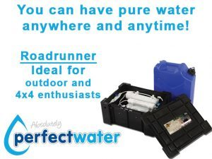 Perfect-Water-Roadrunner