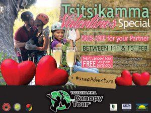 Tsitsikamm-Canopy-Tour-Valentines-Spacial