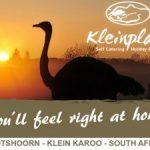 Accommodation-Kleinplaas-Oudtshoorn