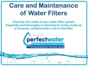 Cleaning-Filters-Perfect-Water
