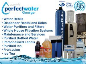 Absolutely Perfect Water George Whole House Water Filtration Systems
