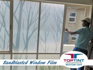 Sandblasted window film in George