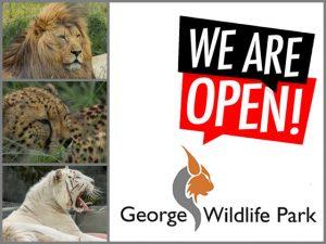 George Wildlife Park were open