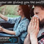 TopTint Is your car giving you the sniffles