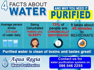 4 Facts about Water and Why You Need It Purified