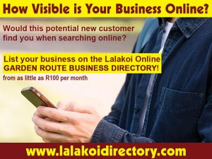 How Visible is Your Business Online