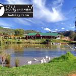 Wilgewandel Restaurant
